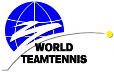World TeamTennis 1992-1993 Primary Logo decal sticker