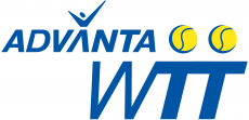 World TeamTennis 2008-2009 Primary Logo decal sticker