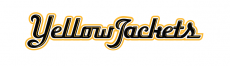 AIC Yellow Jackets 2009-Pres Wordmark Logo 36 inches decal sticker