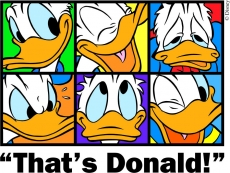 Donald Duck Logo 02 iron on sticker