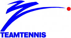 World TeamTennis 1983-1984 Primary Logo decal sticker