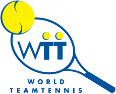 World TeamTennis 2000-2007 Primary Logo decal sticker